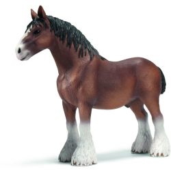 Paarden Clydesdale Hengst